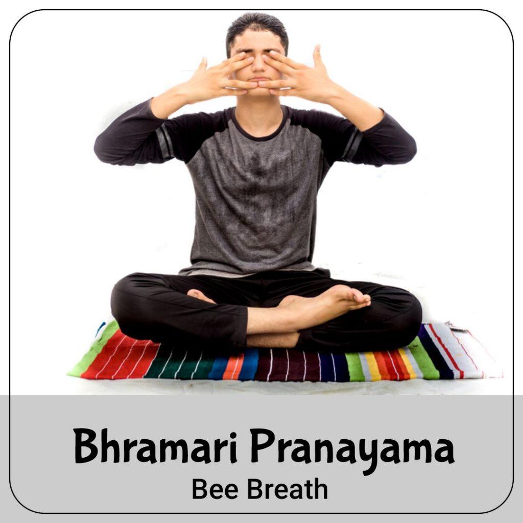 Bee Breath