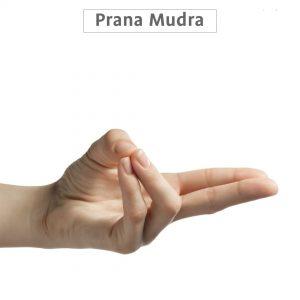 prana mudra benefits