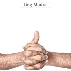 Ling mudra benefits